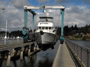 Haul Out at SwanTown Marina in Olympia, WA.