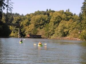 Kayaker's exploring Judd Creek on Vashon Island.