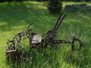 Old farm equipment left out in the fields of Hope Island.