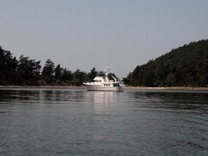 Sea Eagle Anchored in Fossil Bay.