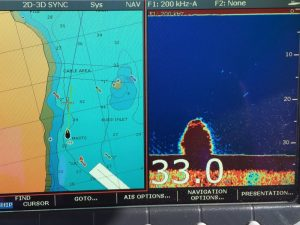 Sonar is now working thanks to a new DSM.