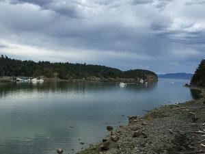 Empty mooring buoys in Fossil Bay