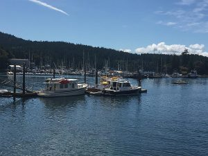 Yes Please rafted up at the Orcas Island Yacht Club reciprocal moorage.